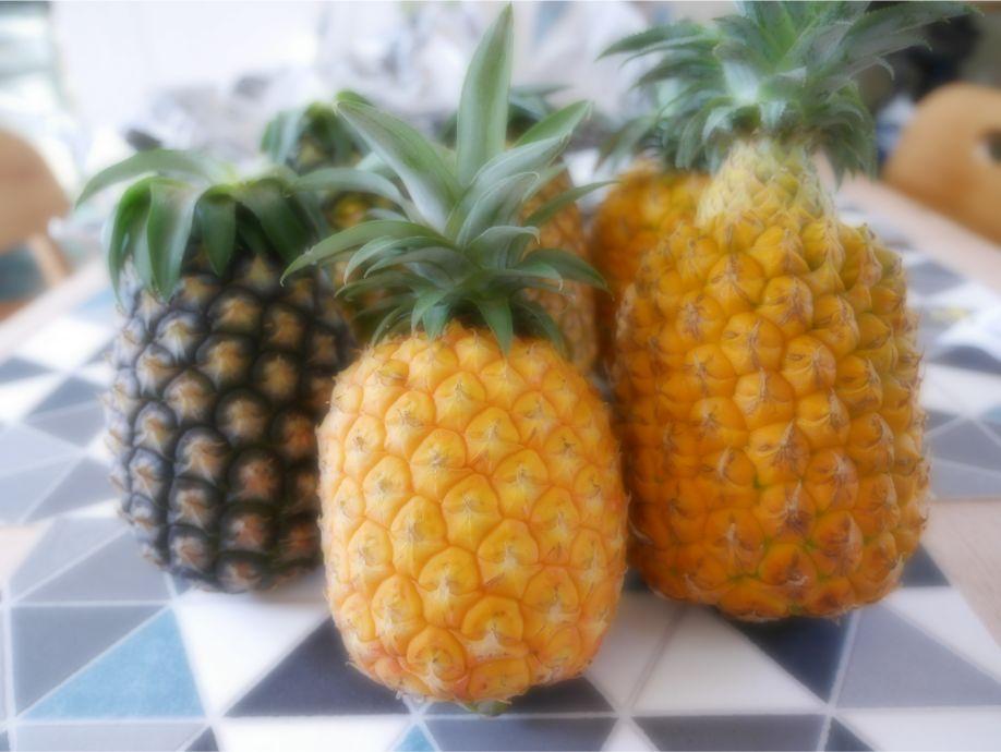 石垣島を代表するパイナップル