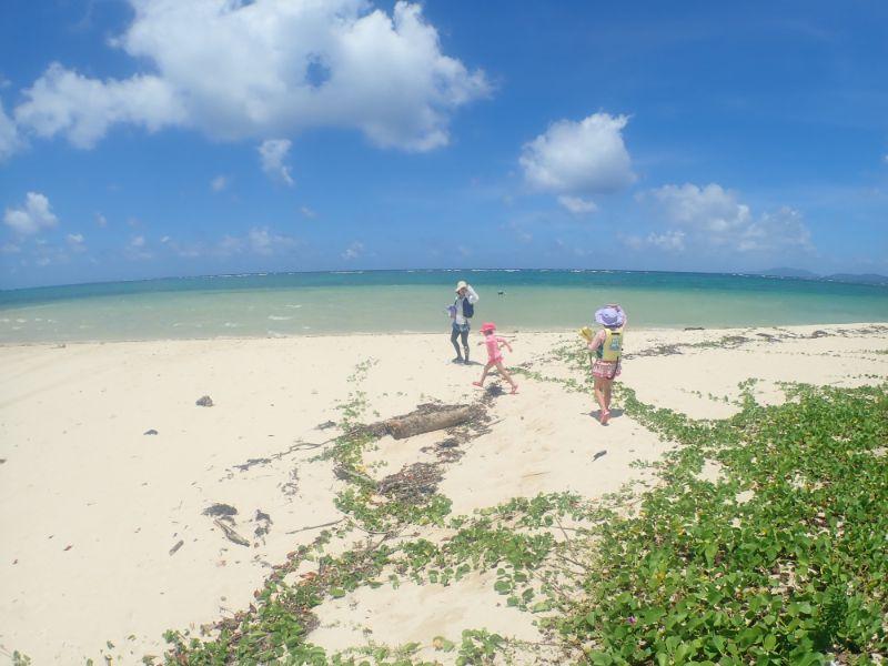 ピゲカゲ浜を歩く親子