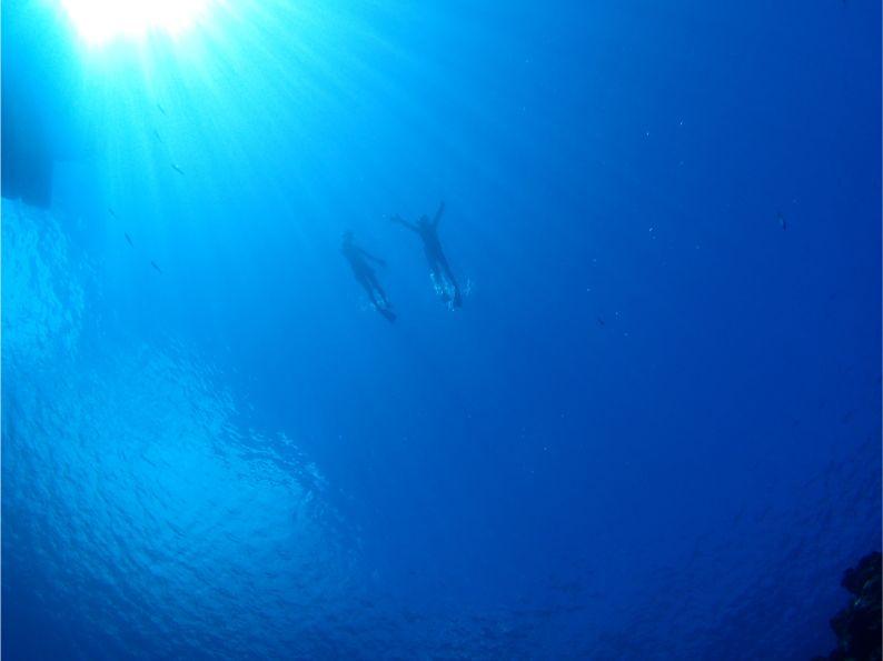 石垣島の海でシュノーケルを楽しむ観光客